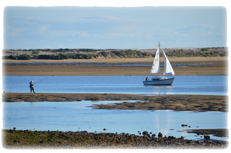 Fishing and sailing on the estuary